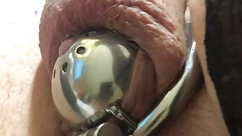 Handsfree cum while in chastity, fucking myself with a dildo